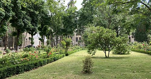 Jardin des Carmes - arbres