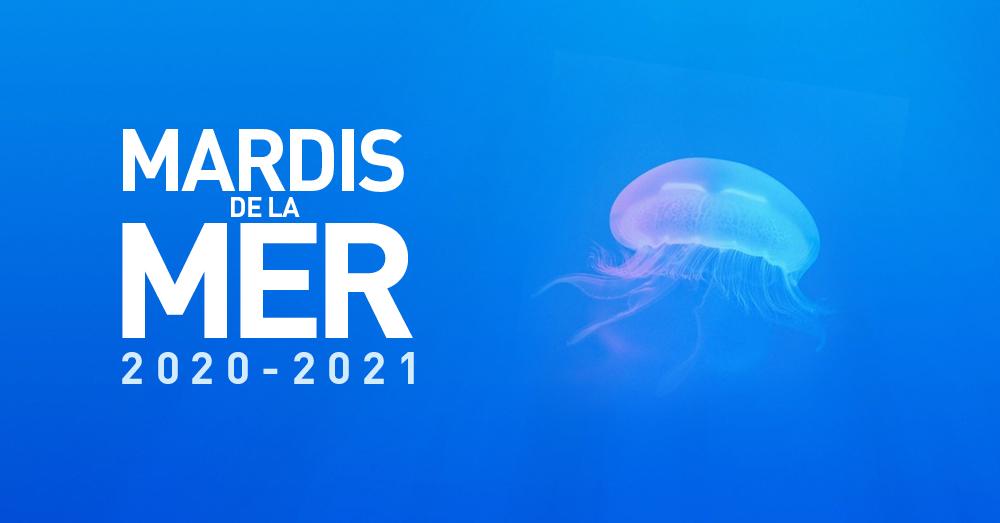FDL_MDM_visuel 2020-21